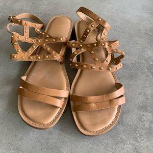 Franco Sarto tan gladiator sandal
